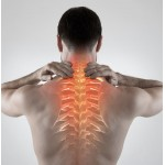 How to find the best back supports and back braces for your condition