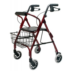 Seniors Walker 4200DX