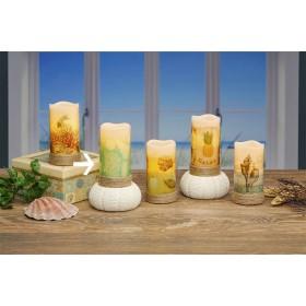 "Shells 3X6"" Led Flameless Candle"